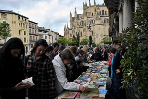 Intercambio de libros en la Plaza Mayor de Segovia